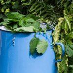"""Natürliche Helferlein für einen gesunden Garten Teil 2 – """"Brennnesseljauche"""""""