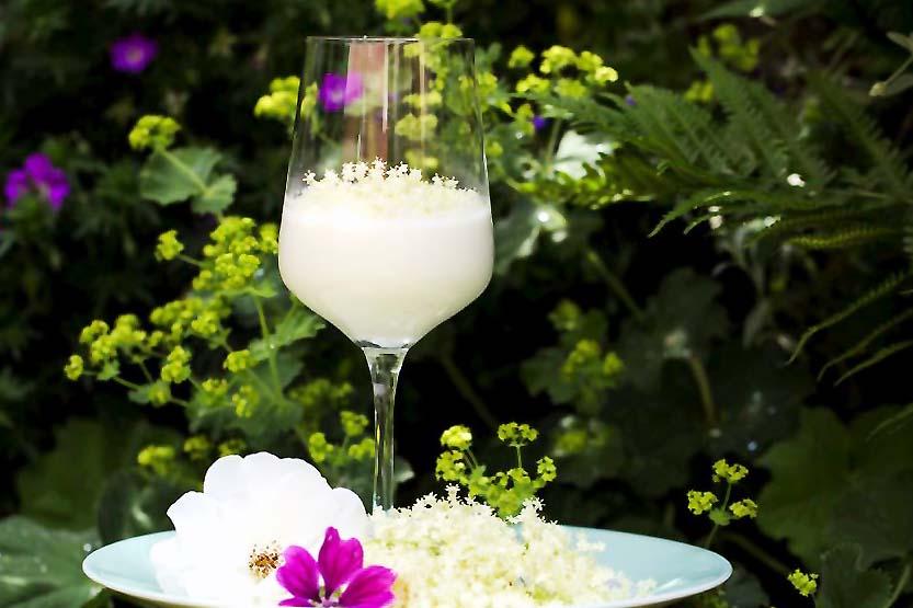 """Rezept mit Holunderblüten, Sonnenwendmilch, aus der Serie """"Coole Drinks"""""""