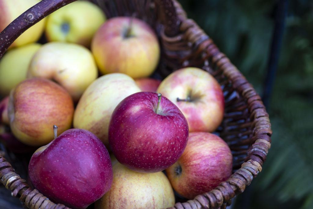Apfel Pektin Apfelkorb