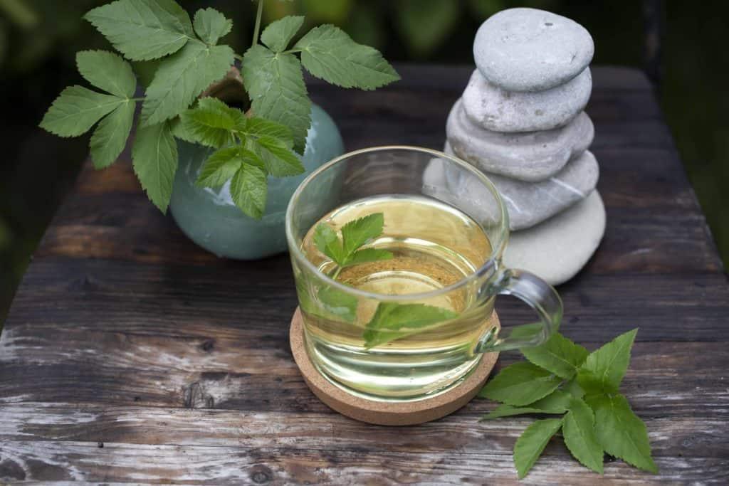 Giersch Tee