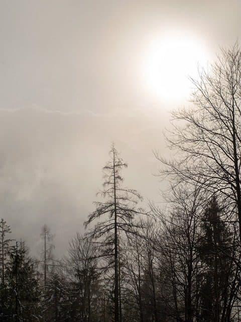 Raunächte - Vom Räuchern und von den dunklen Nächten