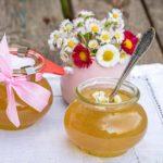 Frühling im Glas: Gänseblümchen-Gelee selbst gemacht