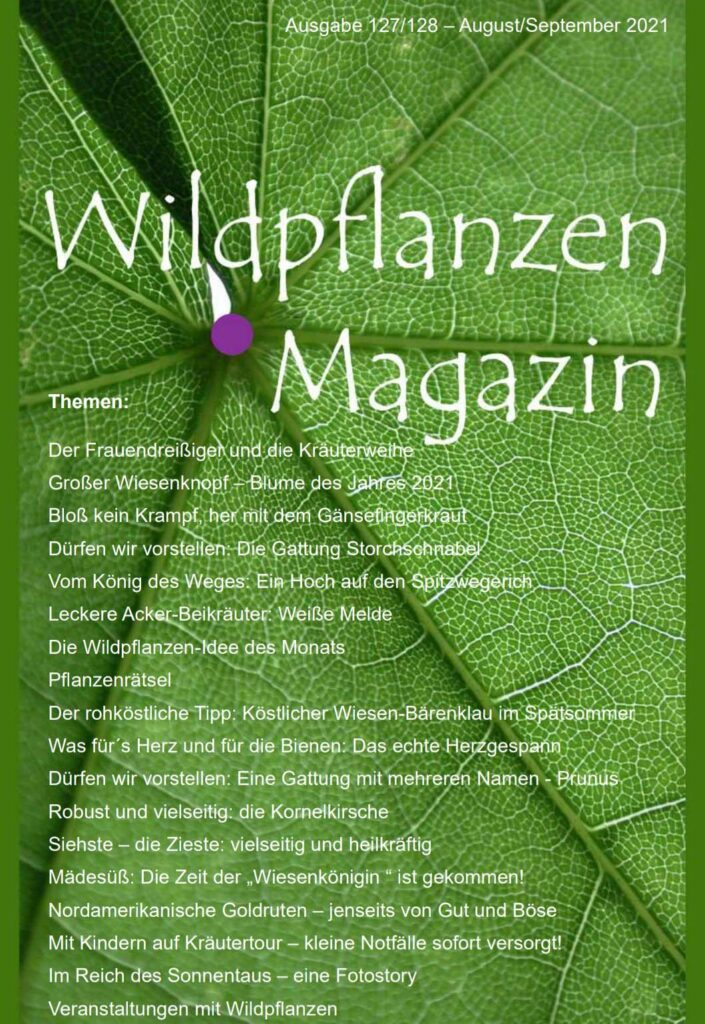 Wildpflanzen Magazin